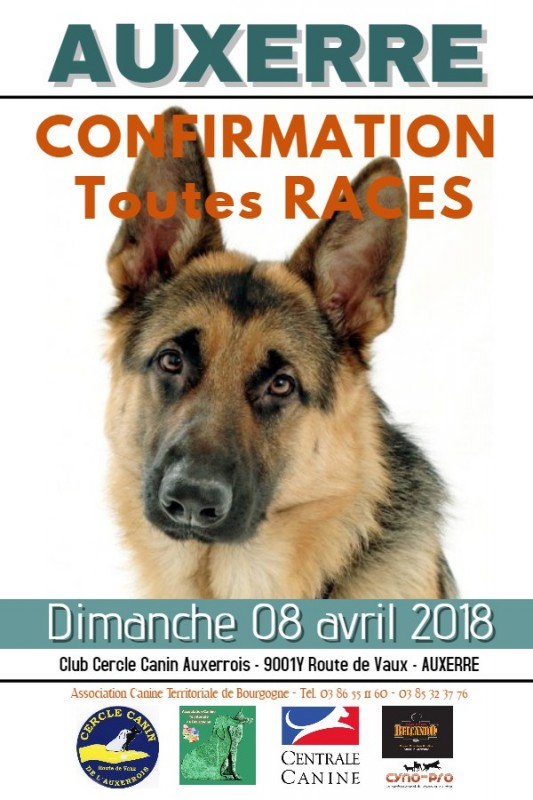 centrale canine 86